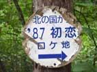 b138.jpg
