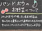 b161.jpg