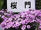 b48.jpg