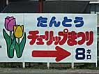 b89.jpg